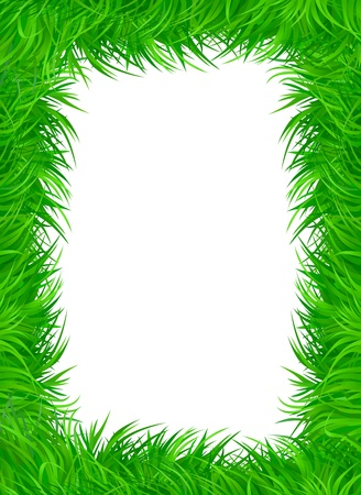 Green grass frame with text area copyspace isolated on white background Vector