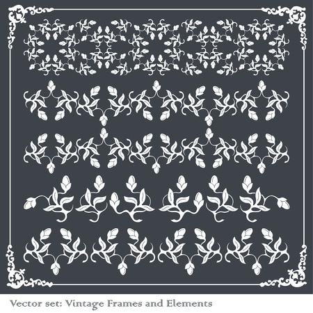 Vintage frames and elements background illustration Vector