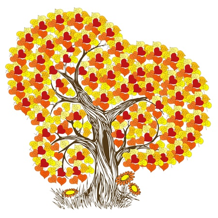 Beautiful and romantic autumn tree illustration Vector
