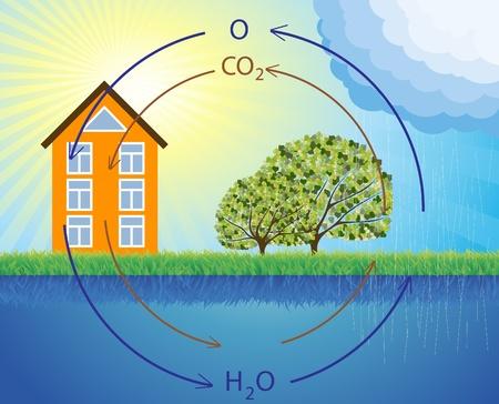 evaporacion: Vector animado representaci�n esquem�tica del ciclo del agua en la naturaleza