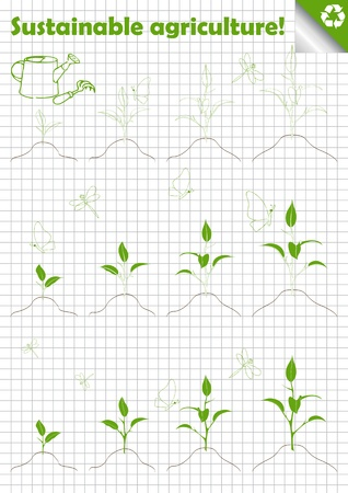 Green agriculture tree collection Vector