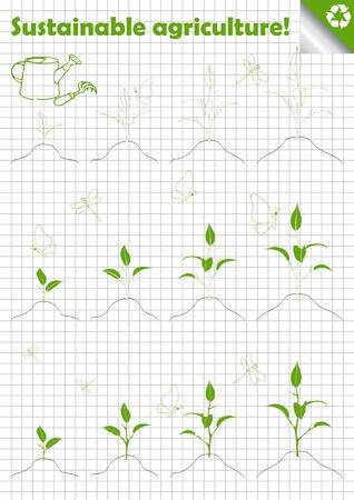 sobreviviente: Verde la agricultura colecci�n de �rboles