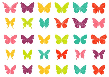 Lots of different multicolored butterflies - vector Vector