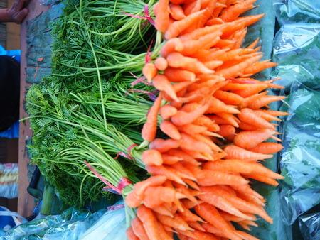 carots: baby carot Stock Photo