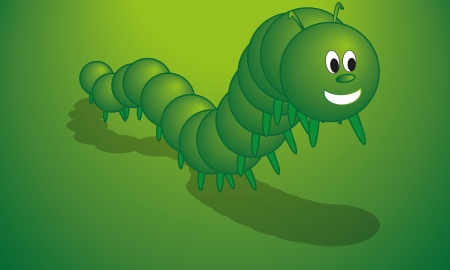 pets, animals, insects, centipede Vector