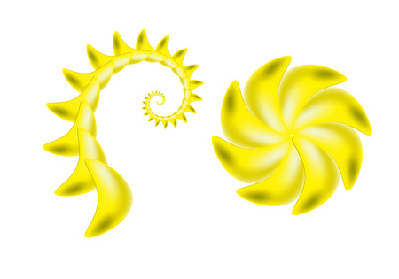the sting of a scorpion and yellow flower on a white background Vector