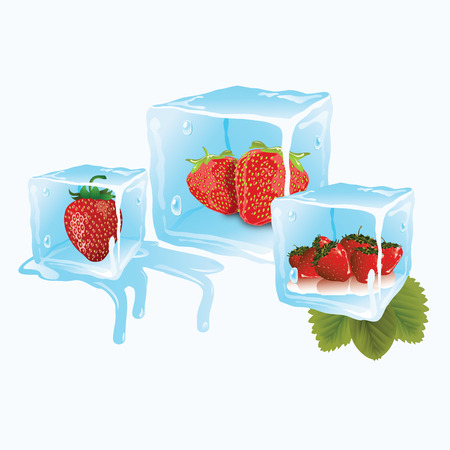 juicy ripe strawberries in bluish ice cubes Vector