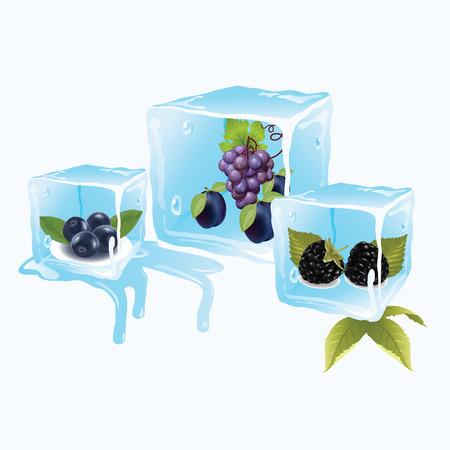 cubos de hielo: uvas jugosas y deliciosas ciruelo cubitos de hielo de ar�ndanos en