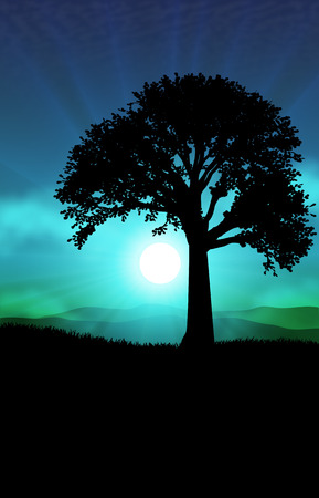 12 o'clock: Landscapes fantastic foreground tree with gorgeous foliage on a background of blue sky with full moon