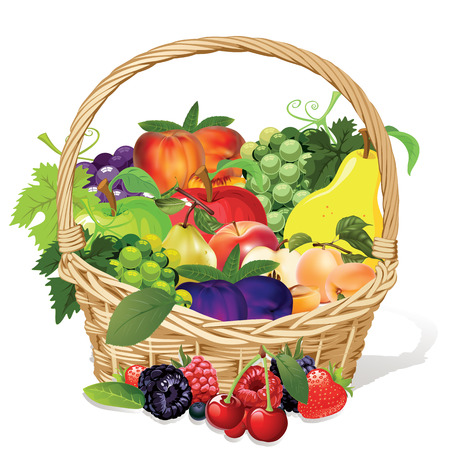 legumbres secas: fruta melocotón uva pera manzana ciruela frambuesa arándano fresa cereza en cesta de mimbre Vectores