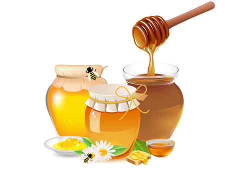 jars filled with honey dish with a bowl of honey and honey slice bread with honey bee on a flower Ilustrace