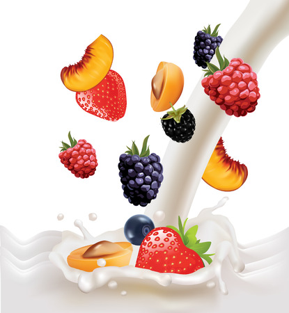 peach plum fruit berry blackberry blueberry raspberry strawberry falling in milk Vector