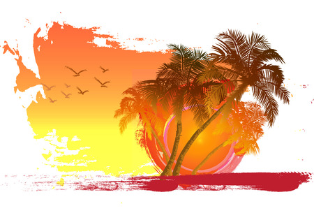Palm trees at sunset background  Palm trees and birds key  Miami  Maldives  Canary Islands  Vector