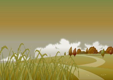 spelt: Autumn  Golden wheat on a background of yellow autumn trees and shrubs  Autumn evening  Illustration
