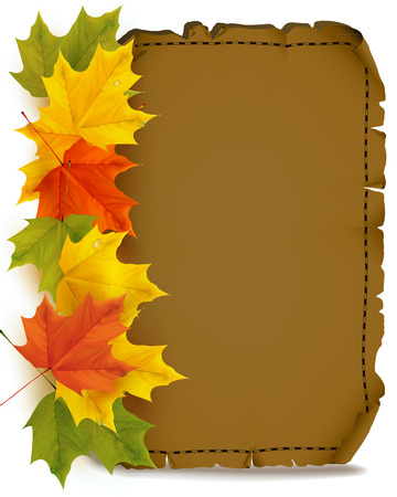 Sheet of parchment. Autumn leaves. Parchment in autumn style. Autumn design for the note. Vector