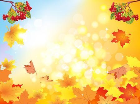 guelder rose: Autumn viburnum. Yellow red autumn leaves. Viburnum n kbtsnyhrfvb on autumn background.