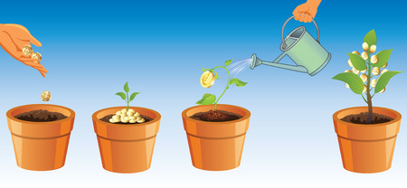 potting soil: The process of growing money tree. Tree money. Metaphor for business. Invest and get brybutky.