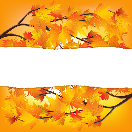 changing form: Twigs of autumn trees. Yellow red autumn leaves. Autumn background with space for writing.