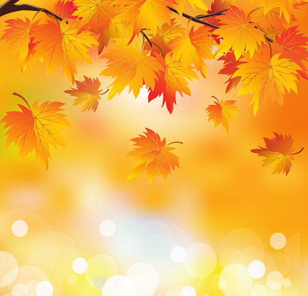 Abstract autumn background. Autumn leaves in yellow orange colors. Golden autumn. Çizim