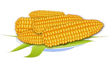 main course: Corns Illustration