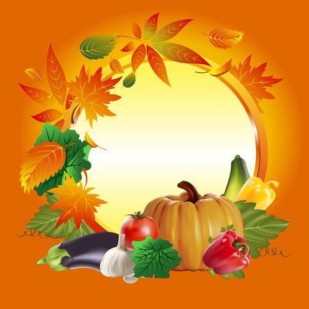 bell tomato: Autumn harvest. Vegetables in the autumn season. Autumn harvest.