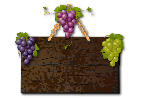 Grapes on a plate. Signboard with grapes. Panel to ads with grapes. Vector