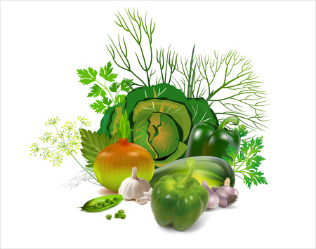 Green vegetables. Greens. Green pepper. Cabbage. Cucumber. Parsley. Dill. Peas. Vector