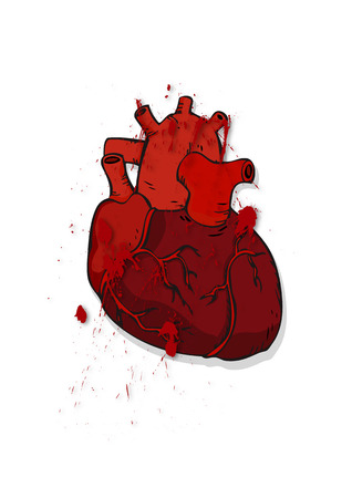 right ventricle: The heart of man. Prepared human heart. Bloody human heart.