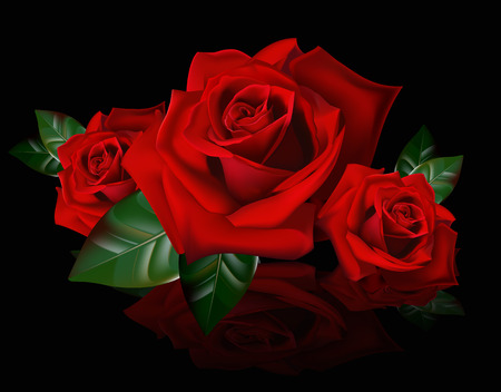 A bouquet of red roses. Reflection picture bouquet of red roses. The buds of roses. Illustration