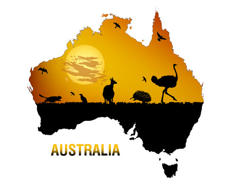 The mainland Australia, vector art illustration fauna of Australia.