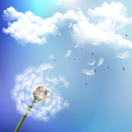 blue dandelion: Dandelion on the wind scatters vector art illustration. Illustration