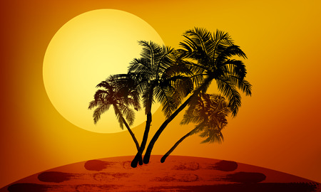 tropical beach panoramic: Palm trees at sunset vector art illustration. Illustration