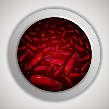 high scale: Red blood cells in a capillary, vector art illustration.