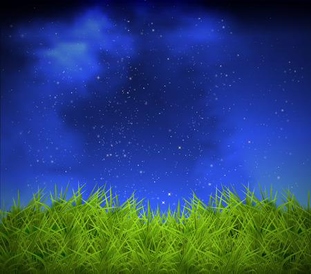horizon over land: Grass on a background of the night sky, art illustration.