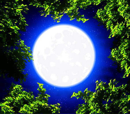 tranquil scene on urban scene: Trees on a background of the full moon, art illustration. Illustration