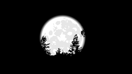 lit: Silhouettes of trees on a background of the full moon, vector art illustration.