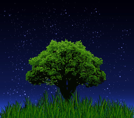 lonely tree: Lonely tree in the night sky, vector art illustration.