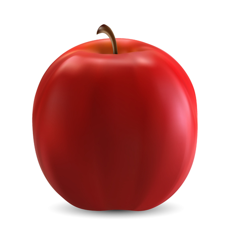 art product: Isolated red apple, vector art illustration product.