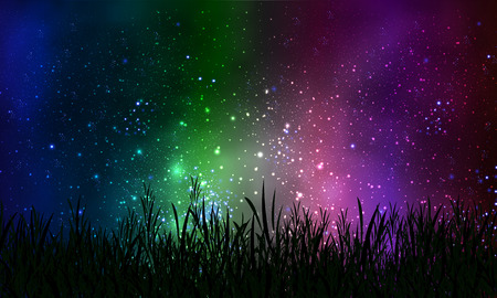 Grass on a background of the night sky Space, vector art illustration.