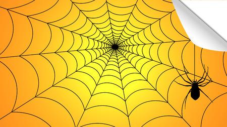 Spider weaves a web of halloween, vector art illustration.