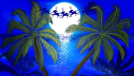 Trees and the moon, vector art illustration. Illustration