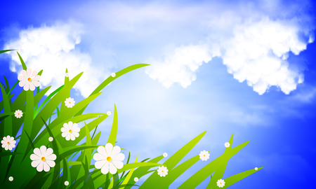 Green grass and daisies against sky landscape, vector art illustration.
