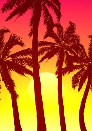 Palm trees on a purple sunset sky Illustration