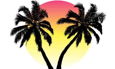 Sunset and silhouette of palm trees