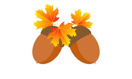 Two acorns with autumn leaves, vector art illustration. Imagens - 130982906