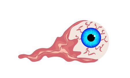 Optic eyeball, vector art illustration.