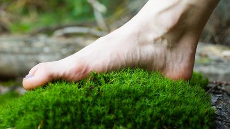 Wiese, Mensch, Bein Frau Maedchen Wald Wandern
