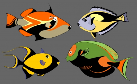 Vector original decorative fish set for design