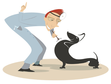 Cheerful veterinarian is examining a dog by endoscope