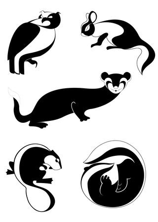 weasel: Decor animal illustration collection for design